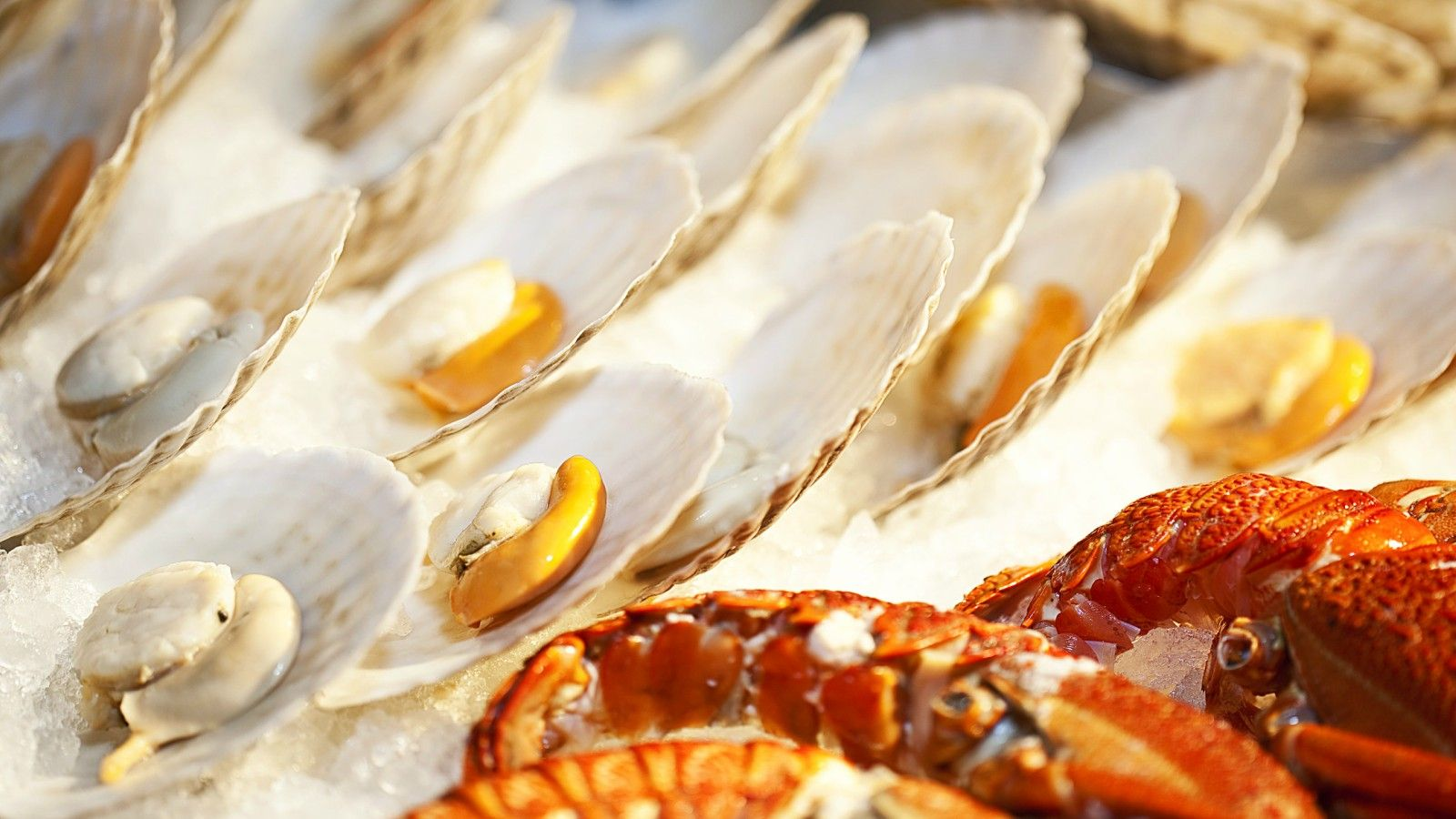 Portland Area Itineraries - Portland Seafood and Wine Festival